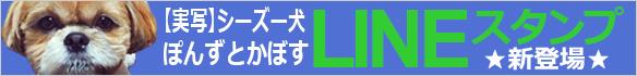 シーズー犬かぼちゃんLINEスタンプ