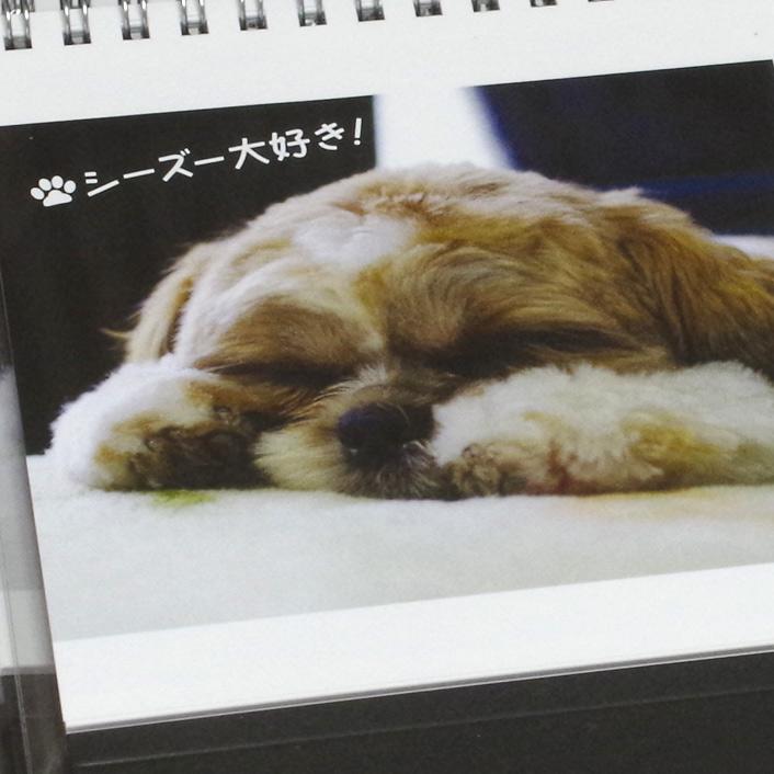 2015年シーズー卓上カレンダー(ぽんかぼ)販売開始です!