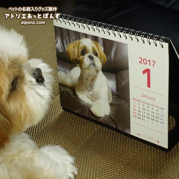 2017_shihtzu_calendar3
