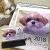 2018年シーズーカレンダー販売開始!