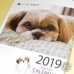 2019年カレンダー販売開始です!