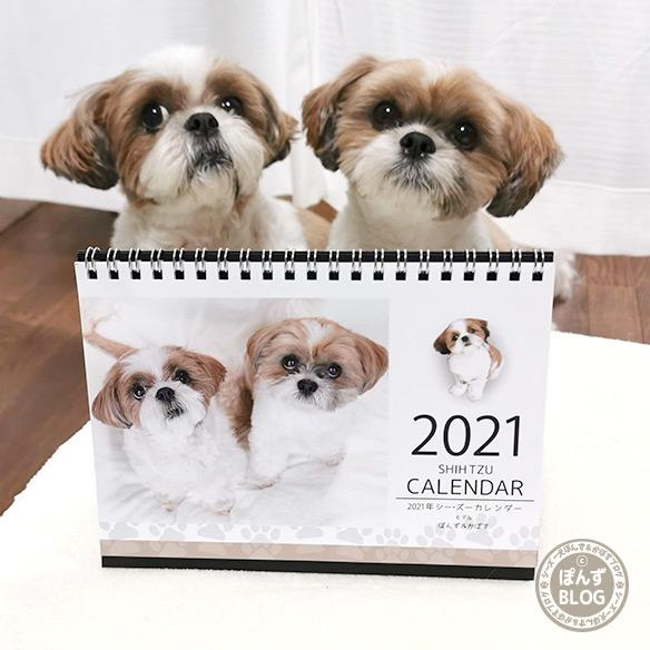 2021shihtzu_calendar_