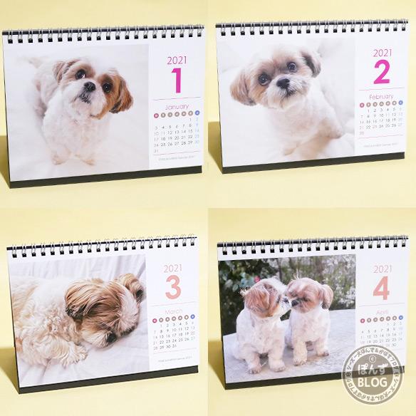2021shihtzu_calendar_3