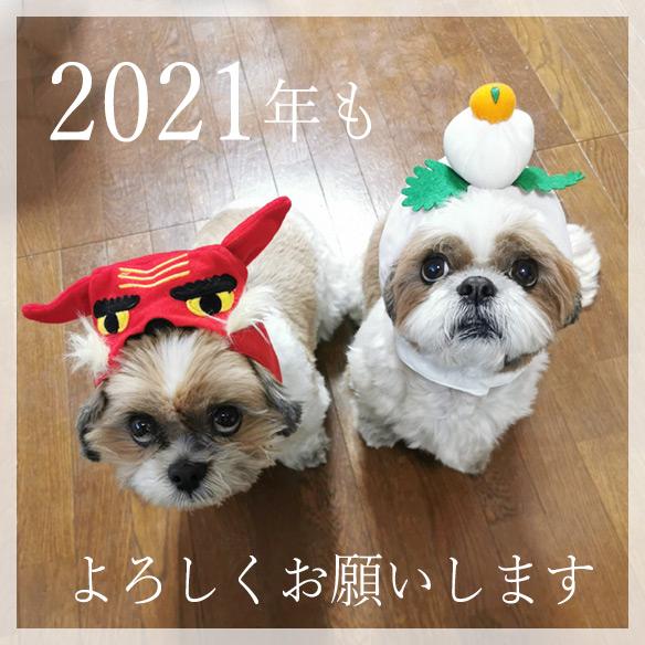 2021sinne8