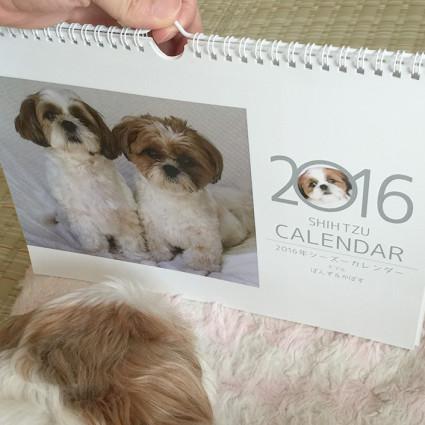 calendarsisaku153