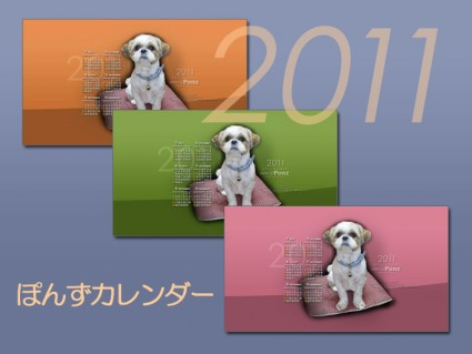 2011年下半期カレンダー付、シーズー犬ぽんず壁紙