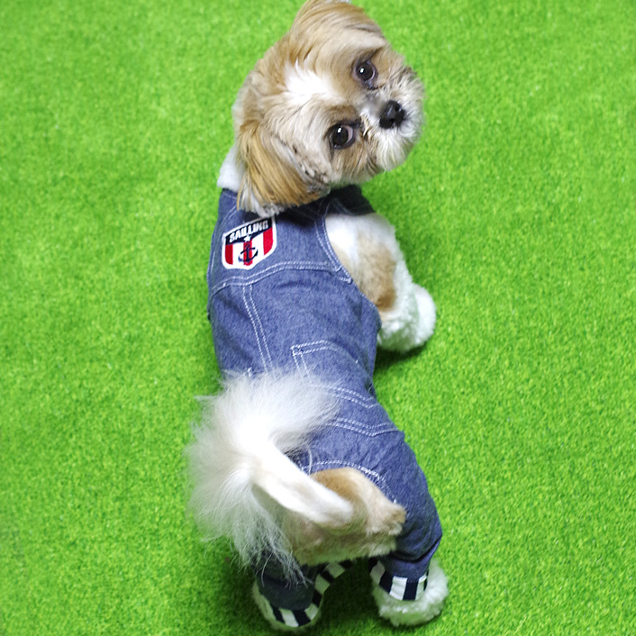 可愛い~デニムの犬用カバーオール入荷です