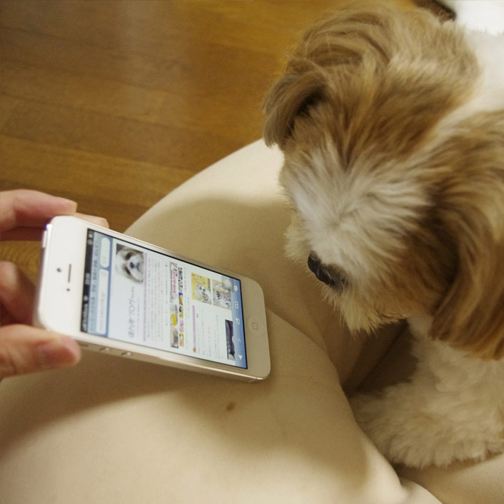 iPhone5、動作チェックなう!