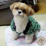 犬用ちゃんちゃんこ!(はんてん)