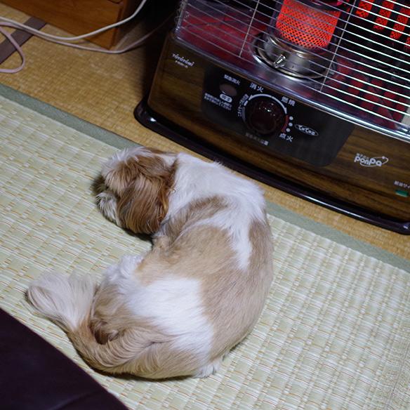 iyoiyofuyukabo4