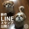新作LINEスタンプを公開!!(2016.12)