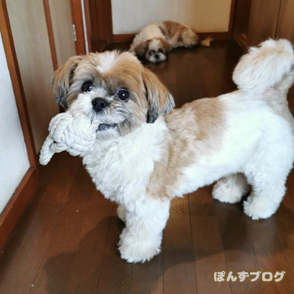 kyokara7gatu5