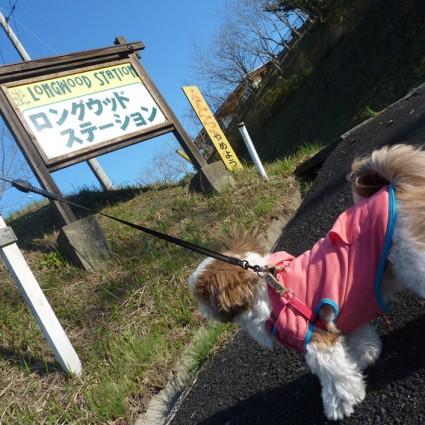 茂原ロングウッドステーション(長柄ダム)