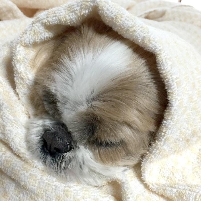 まだまだ寒そうです(- -;)