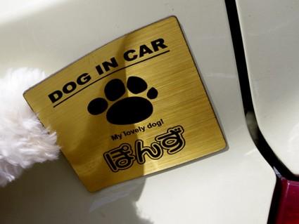 車に貼れる、犬の名前入りマグネットステッカー