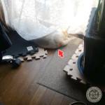 寝床の謎。