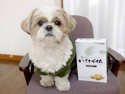 みどりむし使用!犬用サプリメントクッキー『バイオザイム』