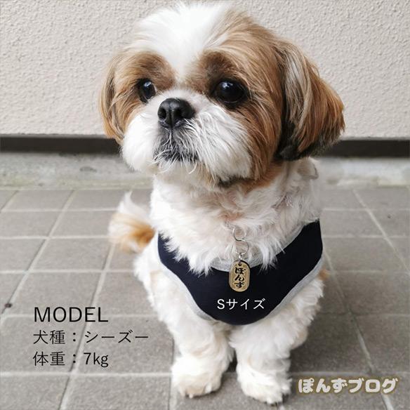 mimiakasojiki10