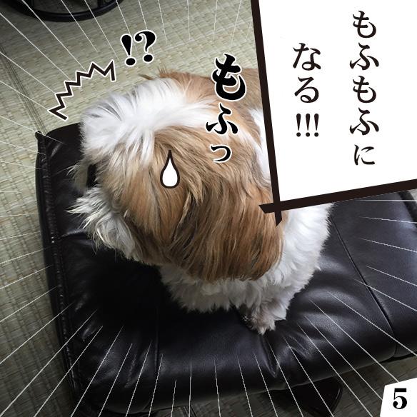 mofunote5