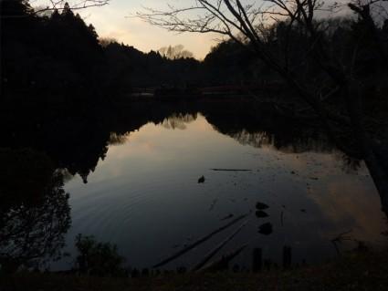 茂原公園の池
