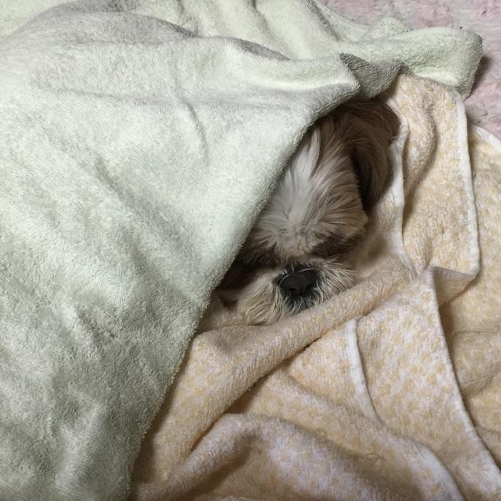 寝起きでも・・・ぱくぱく!!