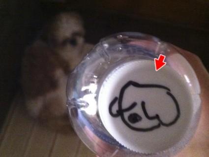 シーズー犬、ぽんずイラスト