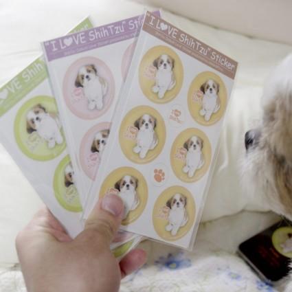 シーズー犬シール(ぽんずシール)