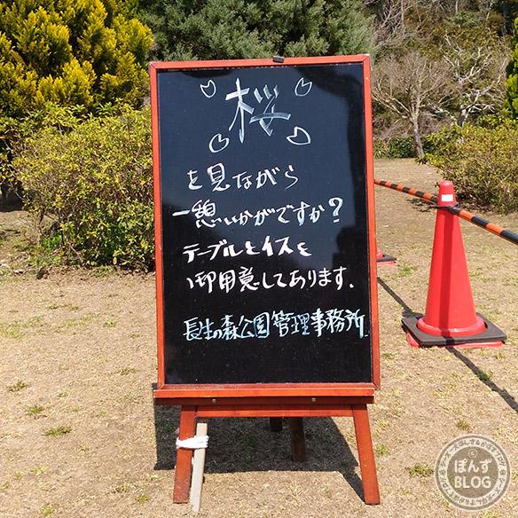sakuraganai2