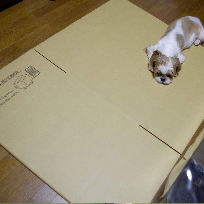 産箱を作りました!