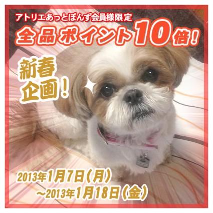 【新春企画】ポイント10倍セールやります!