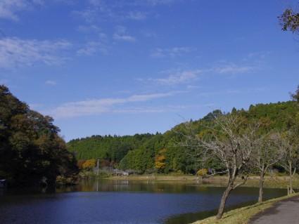 昭和の森1