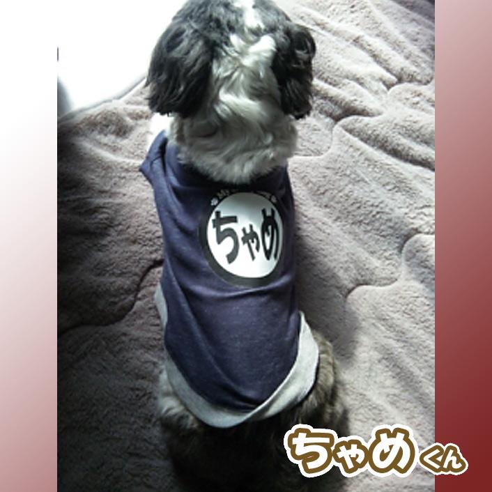 もふもふペットご紹介!(14)
