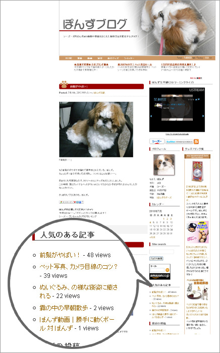 wp-postviewsを導入