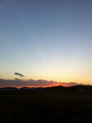 田園から見た夕日